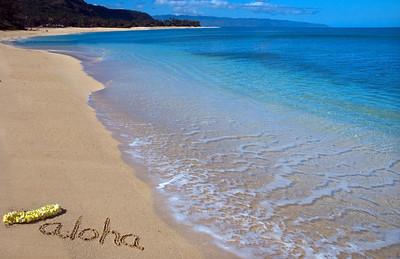 aloha0624a