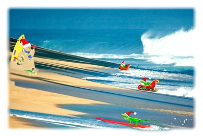 Grn Anole, surfing,sandman,