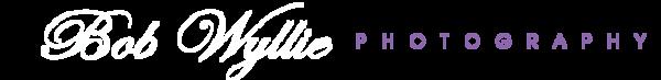 BWP Logo Banner_Color_Final