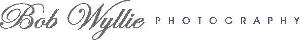 BWP Logo Banner_2Color_Final