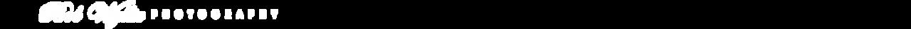 BWP Banner-A-2