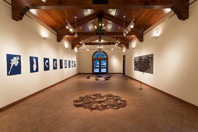 Celeste Roberge, Ocean Floors, March 2014, Installation View