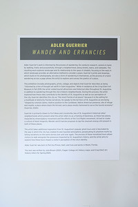 Adler Guerrier, Wander and Errancies, March 6 to April 30, 2020