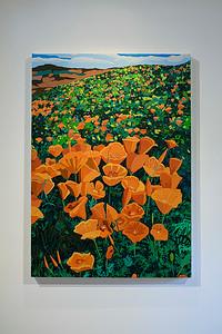 Poppies, 2019