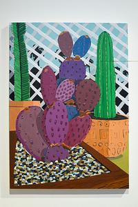 Patio Cactus, 2019