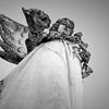 Angels in Mckinneykatherine robertson photography_2