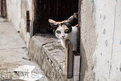 2015_Cuba_0755