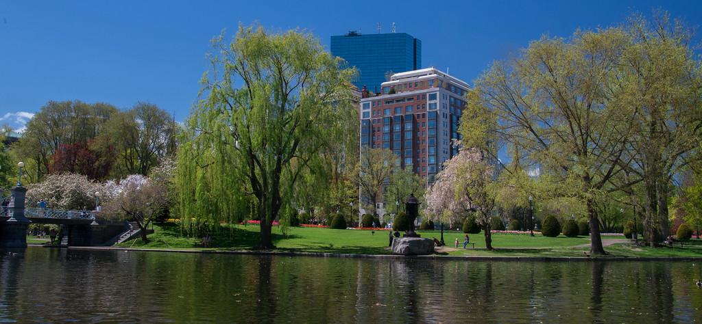 Boston Common - Spring 2013