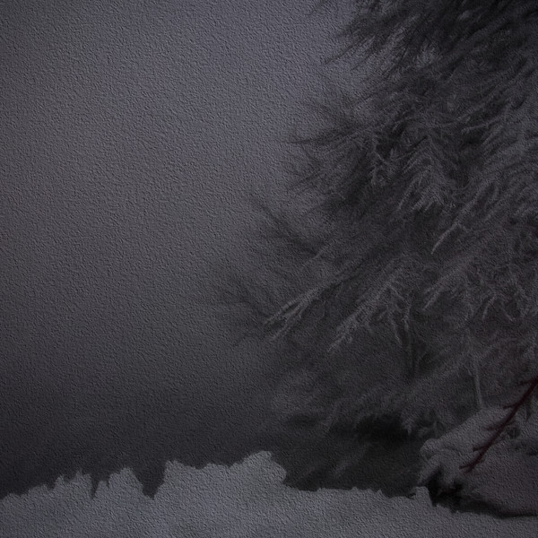 Snow - 2016