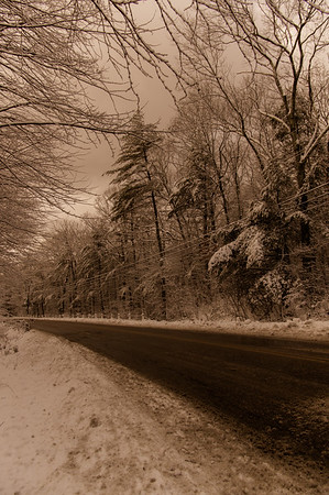 Another Road in Sepia  (portrait)