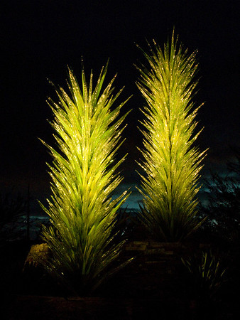 I went to the Desert Botanical Gardens a few weeks ago with some friends for their annual Luminaria event.  This year they also have a temporary installation of Chihuly glass.  It's quite amazing, especially at night.