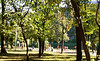Парк баронеси Стелли фон Турнау, літо 2019