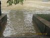 Дністер, повінь 29.06.2010
