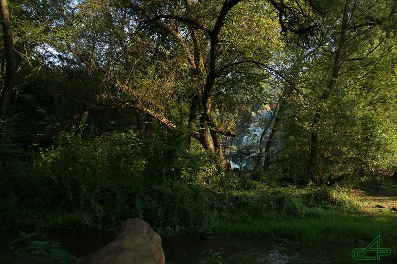 Червоногород.  2015, серпень, 28.   Джурин: за островом - водоспад