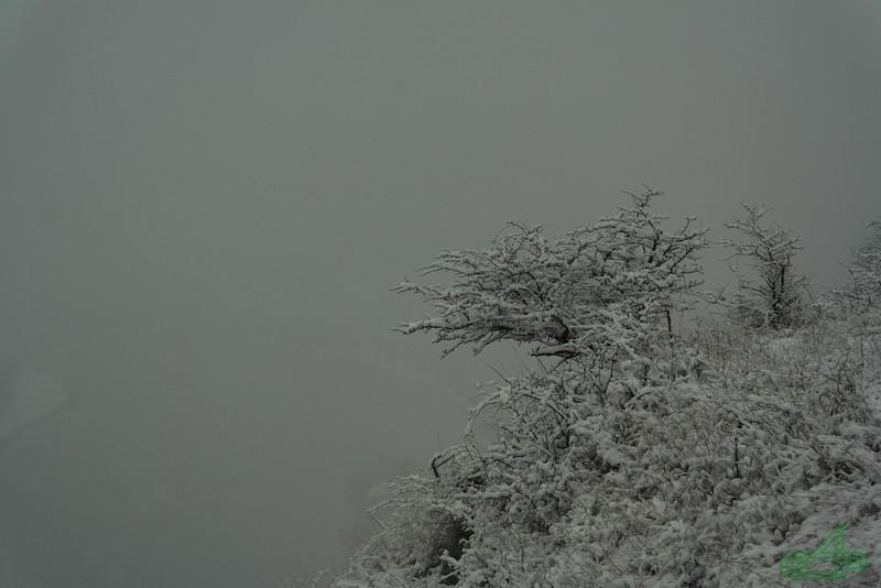 Заліщики. 2014, жовтень, 22.  Верхній парк. Падає. Дністра майже не видно