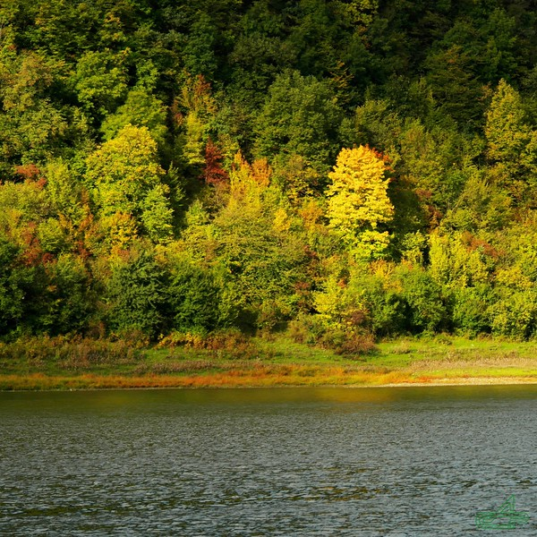 Заліщики 2013, вересень, 27. Буковинський берег з нижнього парку