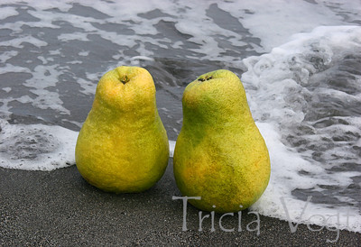 Pomelos-at-the-beach