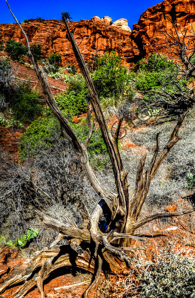 Sedona Arizona landmark -14