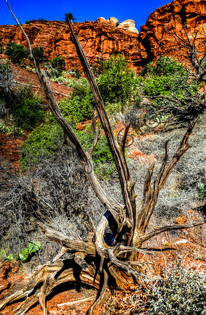 Sedona Arizona landmark -14