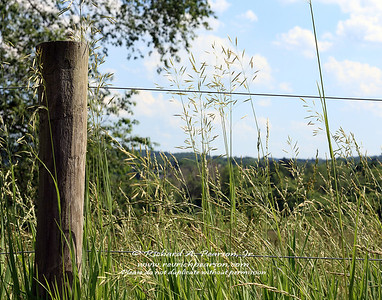 Fencepost with wire fence on a farm in Harmony, PA.