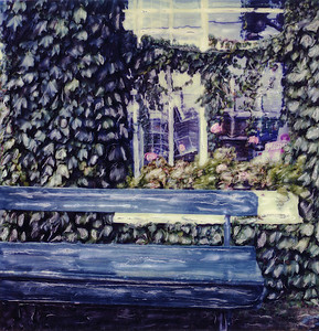Bench and Ivy
