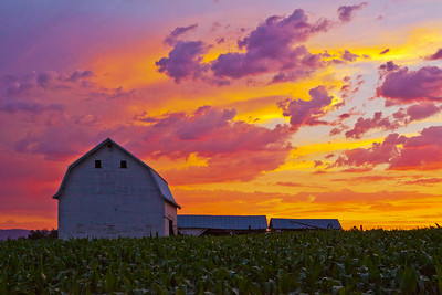 Barn Sunset Perrydale OR_9071