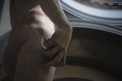 Michelangelo's David. Florence, Italy