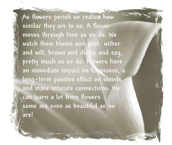 Flower - Karen_text
