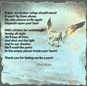 Broken_Wings_by_mdandree
