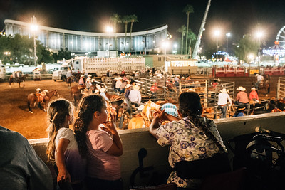 Rodeo at Arizona State Fair, 2014