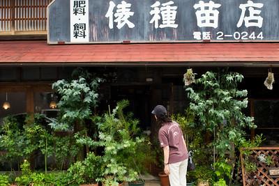 Tsuwano, Shimane, 2012