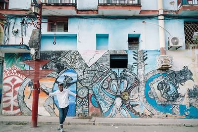 Callejon de hamel, Havana, Cuba, 2017