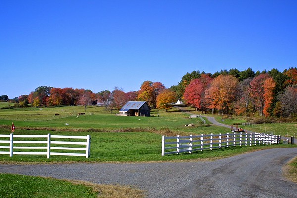 American Fall, Amherst, Massachusetts, USA, 2007