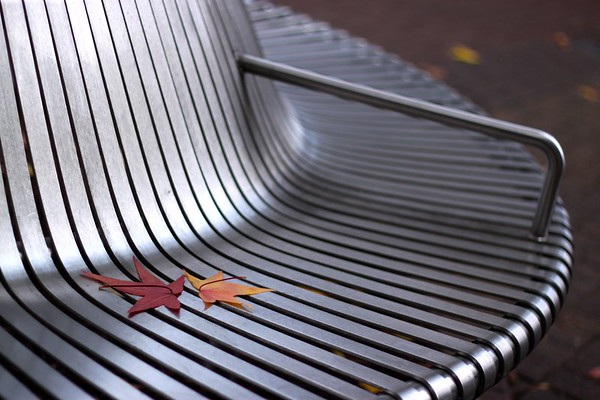 Autumn bench, Oxford, Oxfordshire, UK, 2010