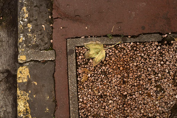 Leaf, gravel & curb, Montrouge, Paris, France, 2011