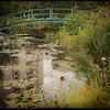 Botanic7253EB