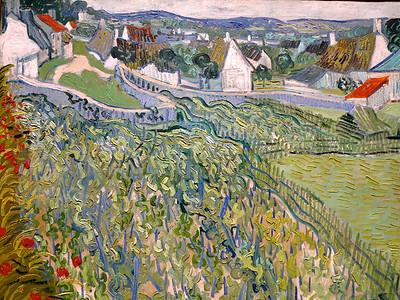 Vincent Willem van Gogh.  Vineyards at Auvers.  1890.