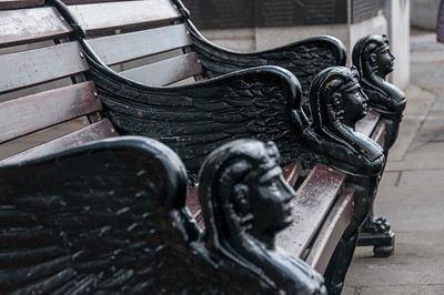 Watchful Bench