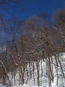 SNOW000612