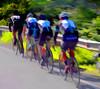 Italian Bicycling Team