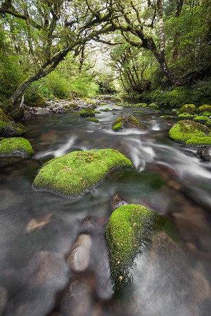 Mangahuia Stream, Tongariro National Park