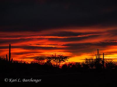 Sunset-310094