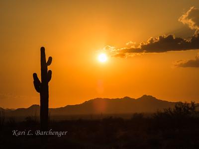 Sunset-8230031