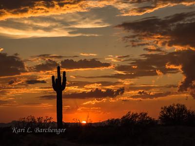 Sunset-8290254