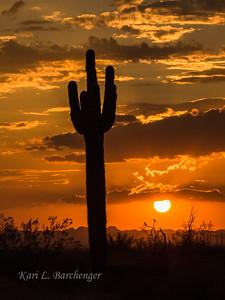 Sunset-8290212