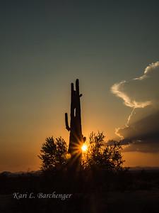 Sunset-8230027