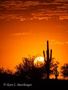 Sunset-010072
