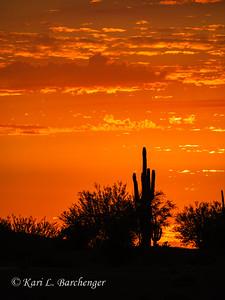 Sunset-010116