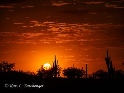Sunset-010064