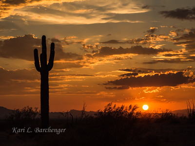 Sunset-8290228
